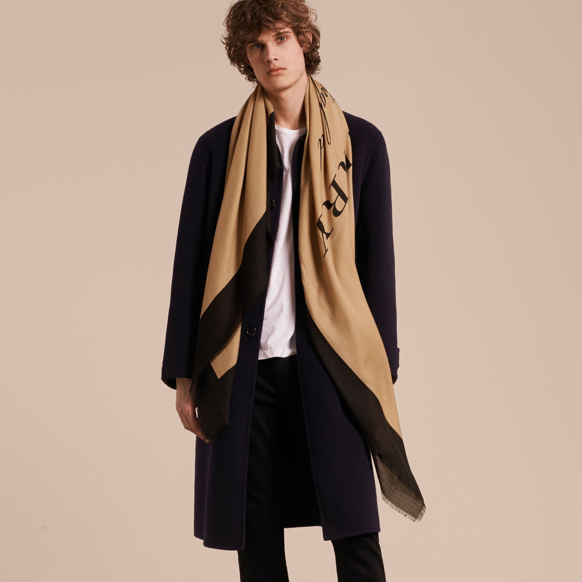 Burberry Print Cashmere Blend Scarf Camel/black - gallery image 4