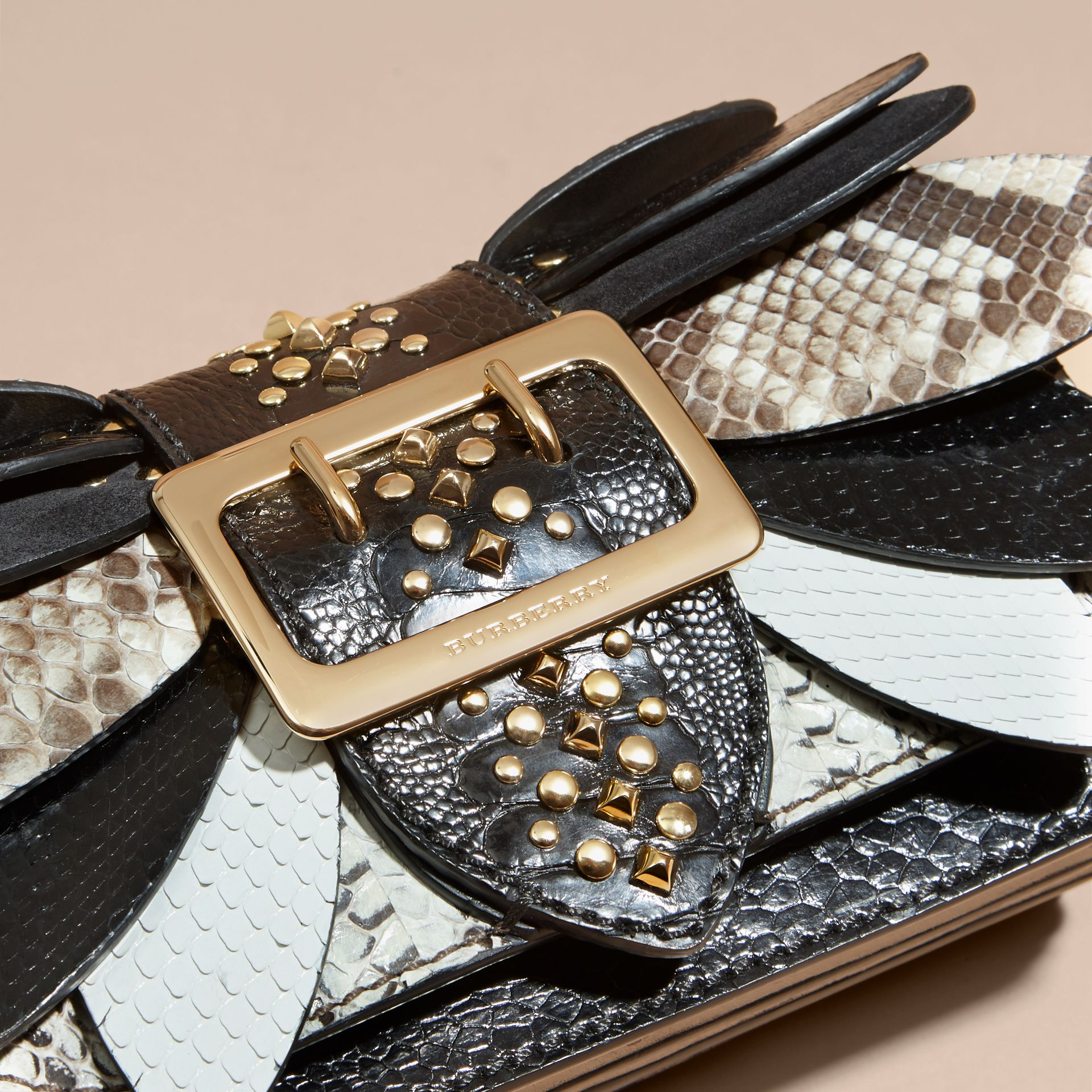 The Small Buckle Bag in Leather and Snakeskin Appliqué - gallery image 2