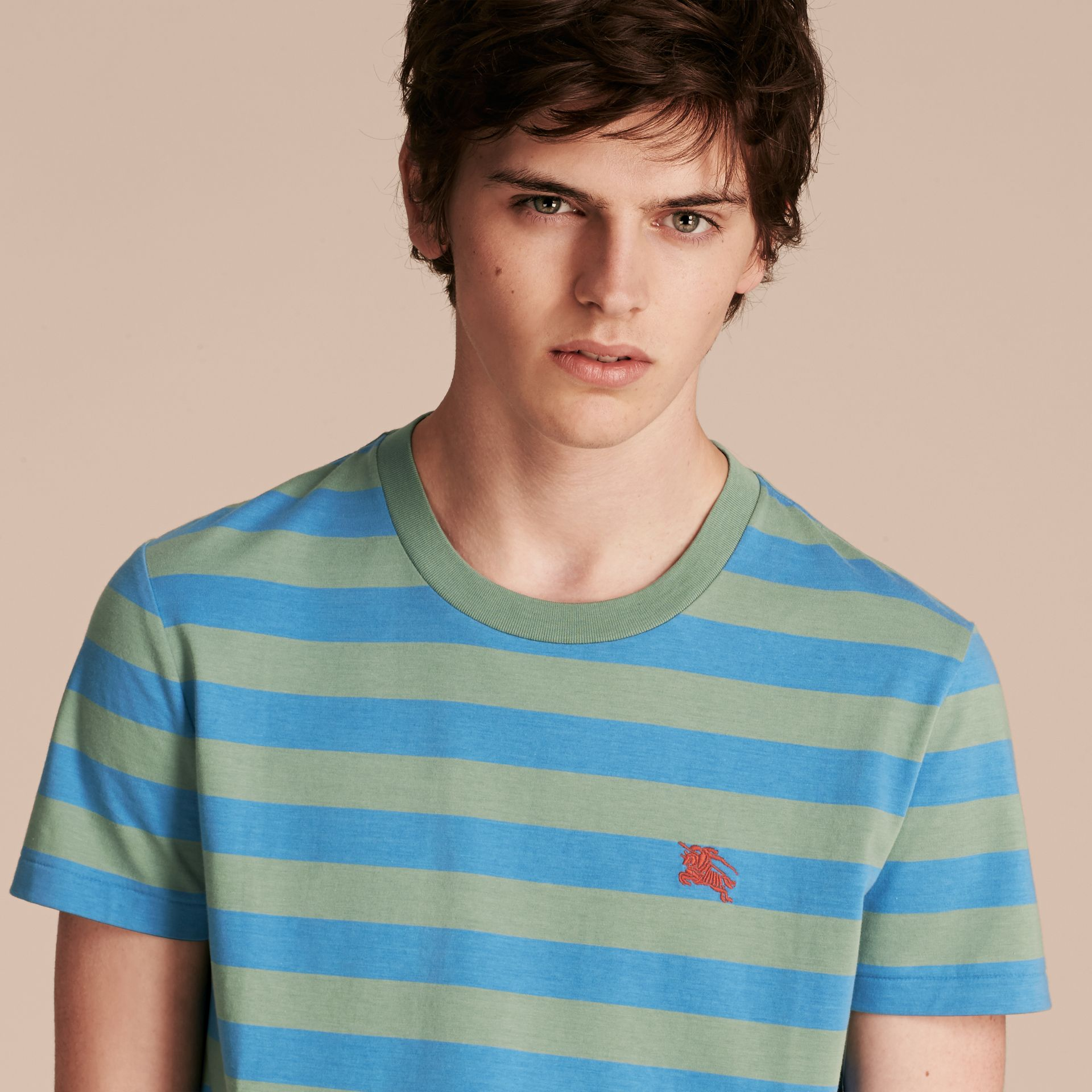 Striped Cotton T-Shirt Eucalyptus Green/chalk Blue - gallery image 5