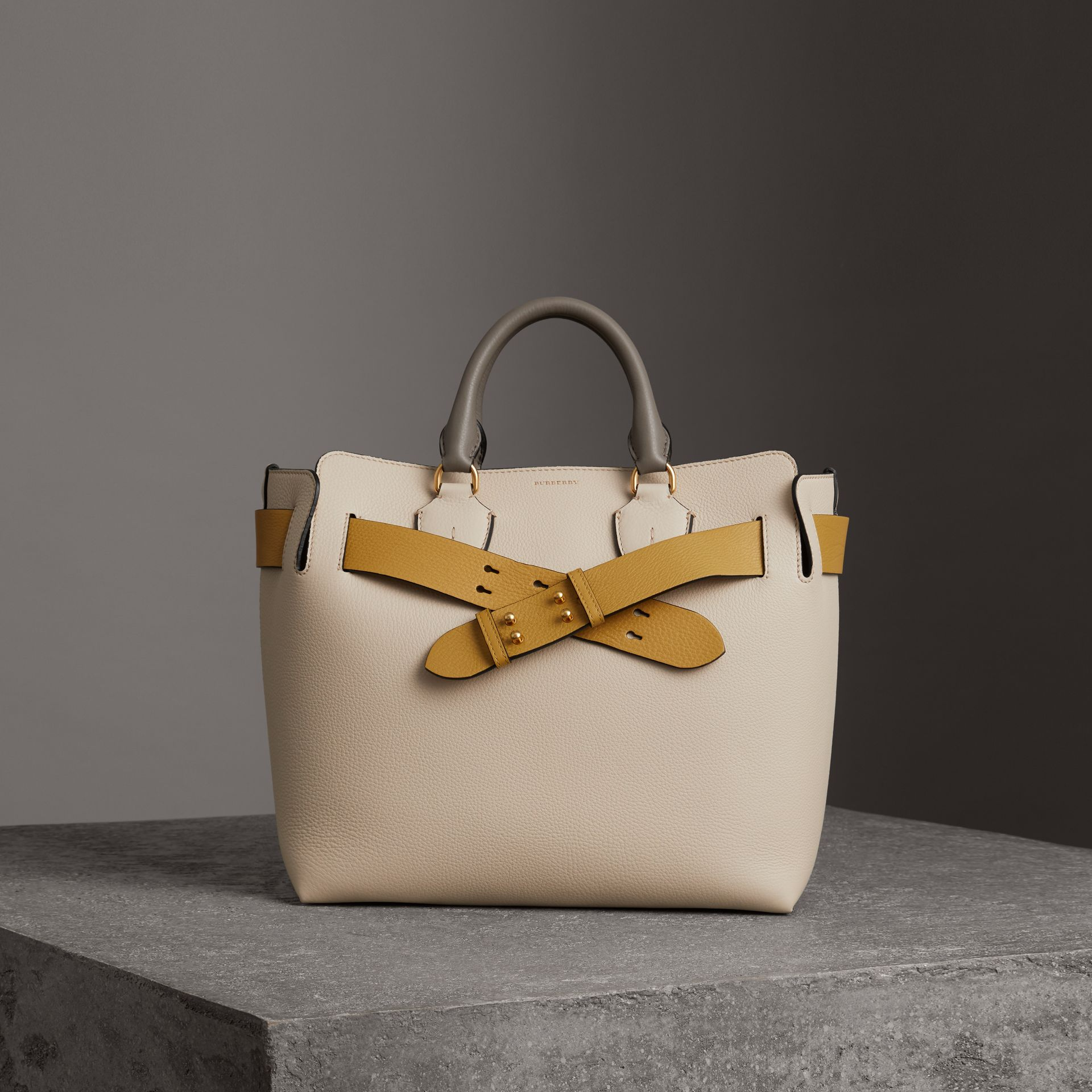 The Medium Tri-tone Leather Belt Bag in Limestone/cornflower Yellow - Women | Burberry Canada - gallery image 0