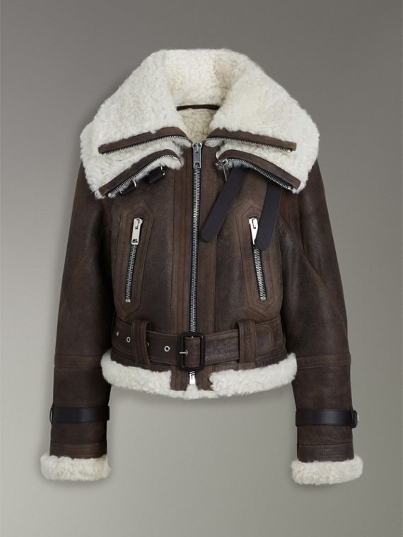 Reissued 2010 Shearling Aviator in Chocolate - Women | Burberry - cell image 3