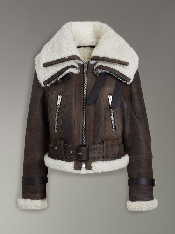 Reissued 2010 Shearling Aviator in Chocolate - Women | Burberry United Kingdom - cell image 3