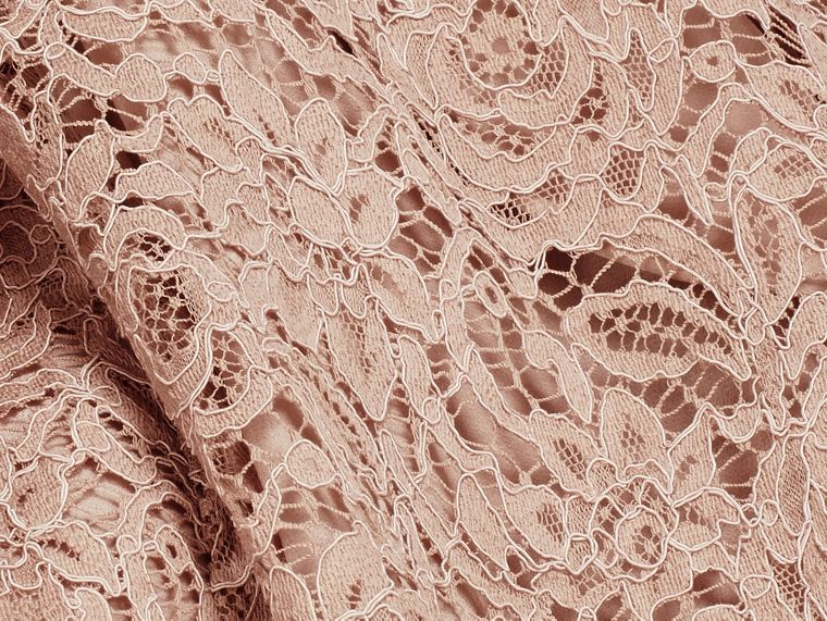 Antique taupe pink Floral and Mesh Lace Dress - cell image 1