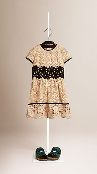 Floral Lace Dress with Contrast Trim