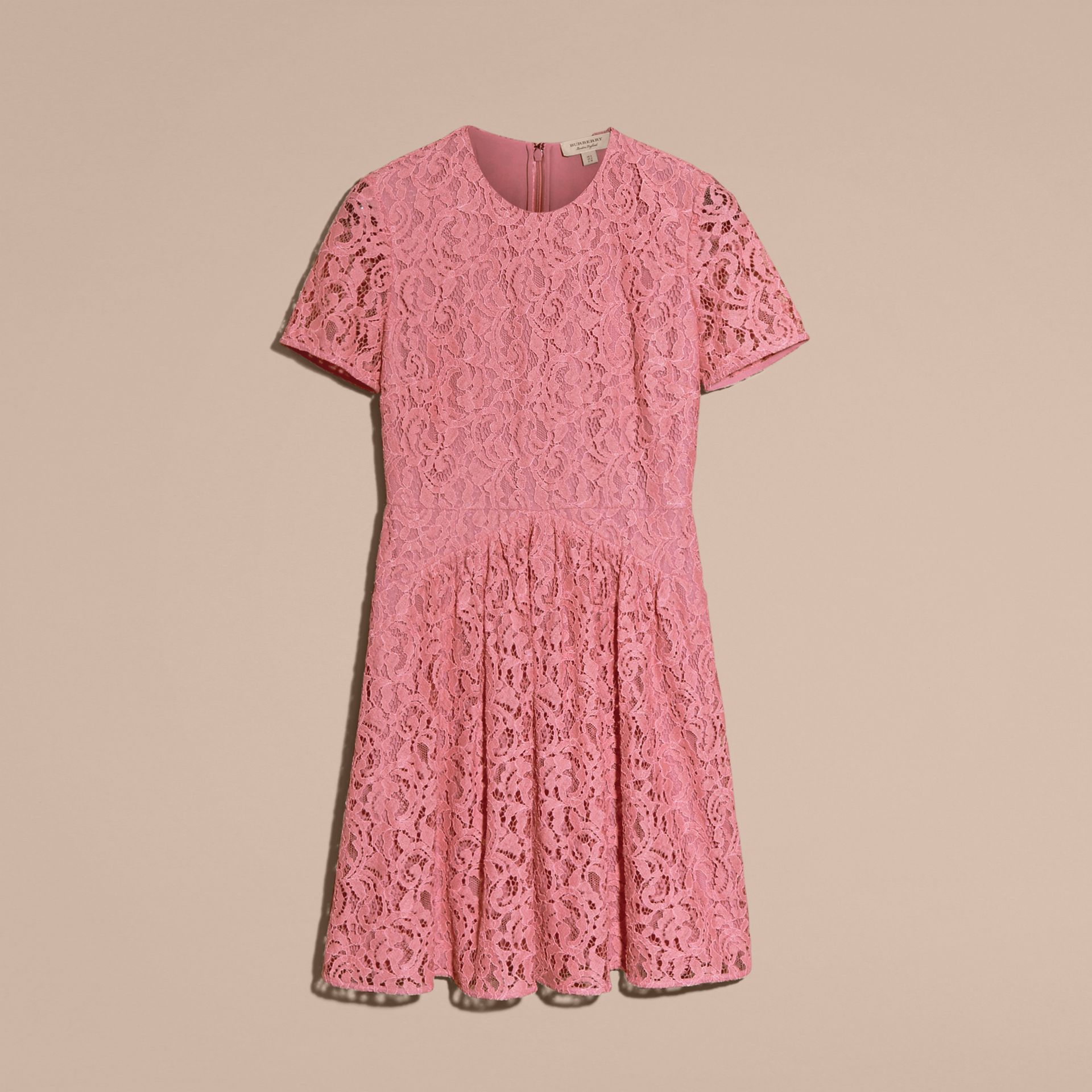 Fit-and-flare Dropped-waist Lace Dress in Antique Rose - gallery image 4