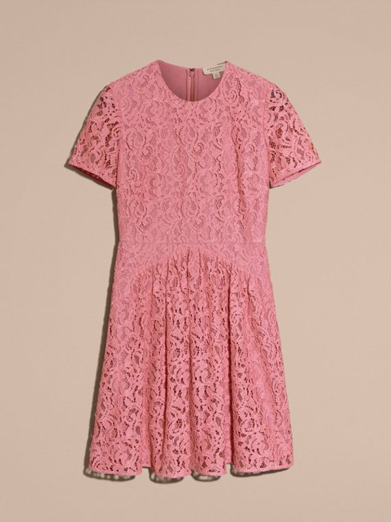 Antique rose Fit-and-flare Dropped-waist Lace Dress Antique Rose - cell image 3