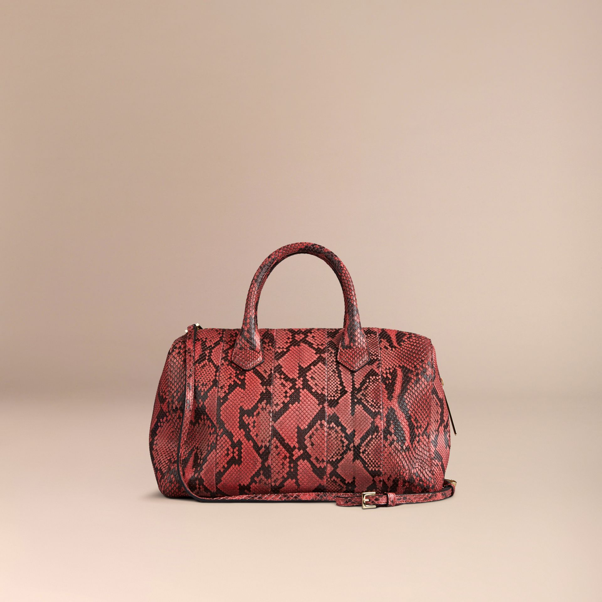 Peony The Medium Alchester in Python - gallery image 5