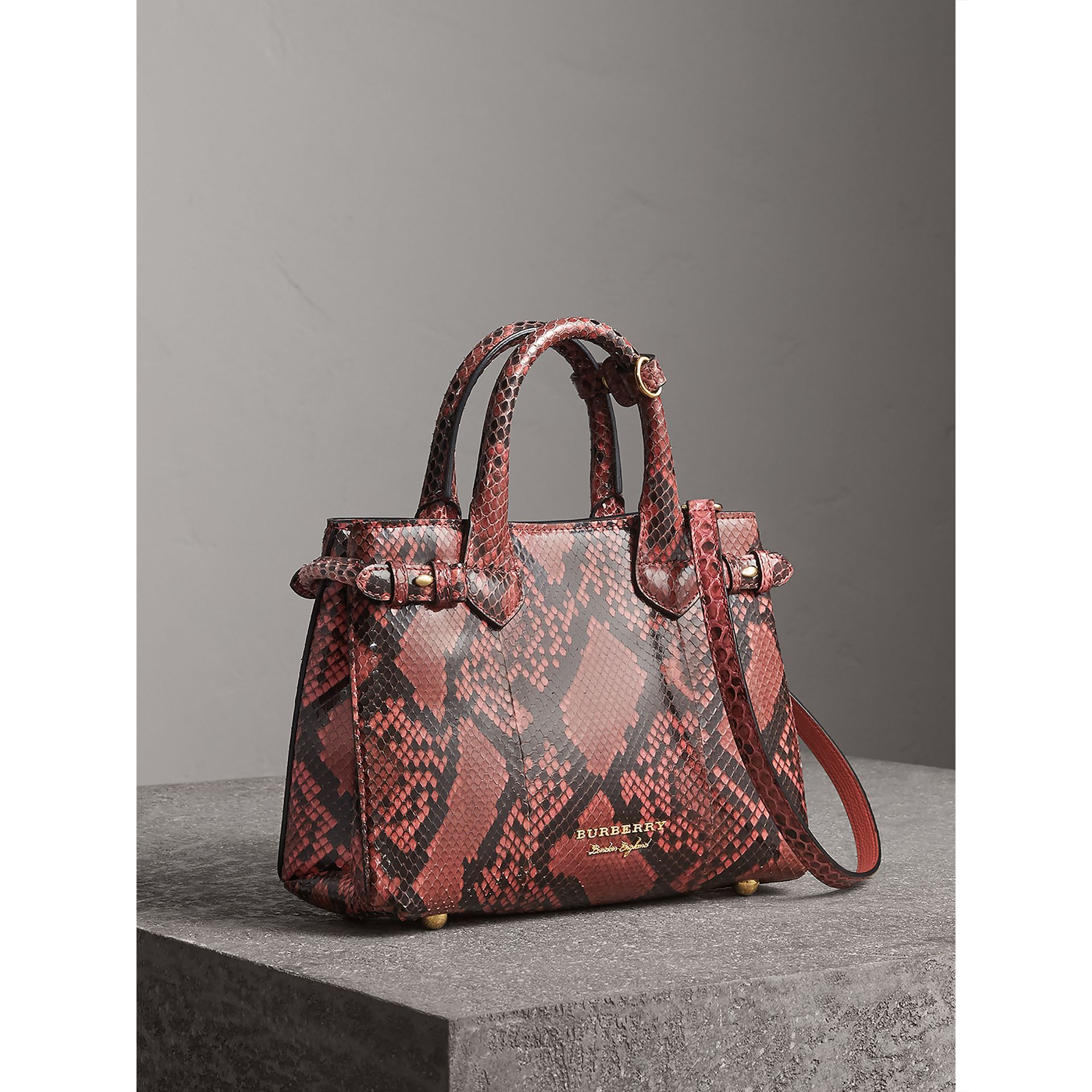Petit sac The Banner en python (Pivoine) - Femme | Burberry Canada - photo de la galerie 0