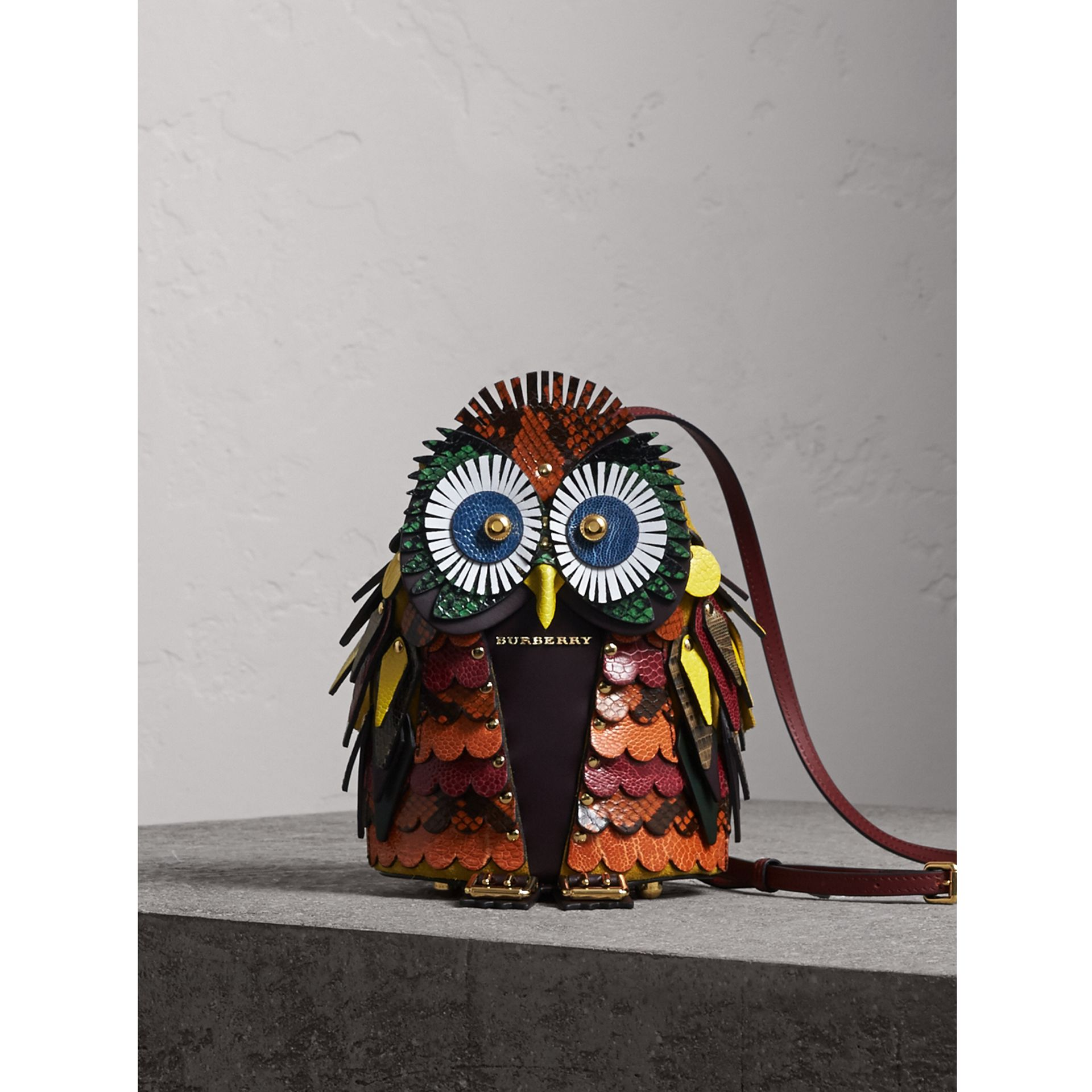 The Owl – Calf Suede and Snakeskin Crossbody Bag in Wine - Women | Burberry United Kingdom - gallery image 1