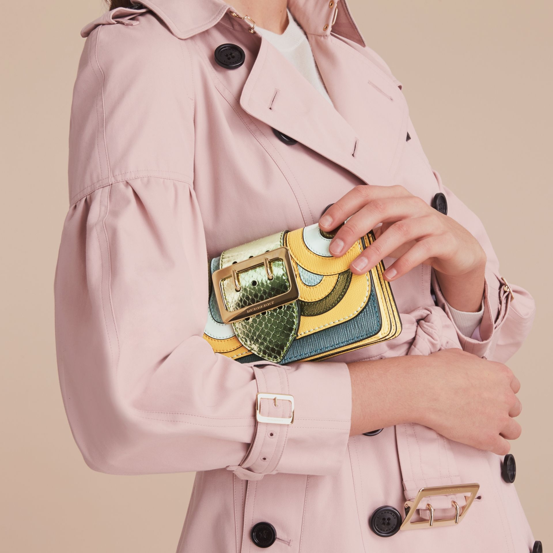 The Small Buckle Bag in Leather and Snakeskin Appliqué - gallery image 4