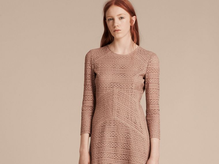 Nude English Lace Panel Dress - cell image 1