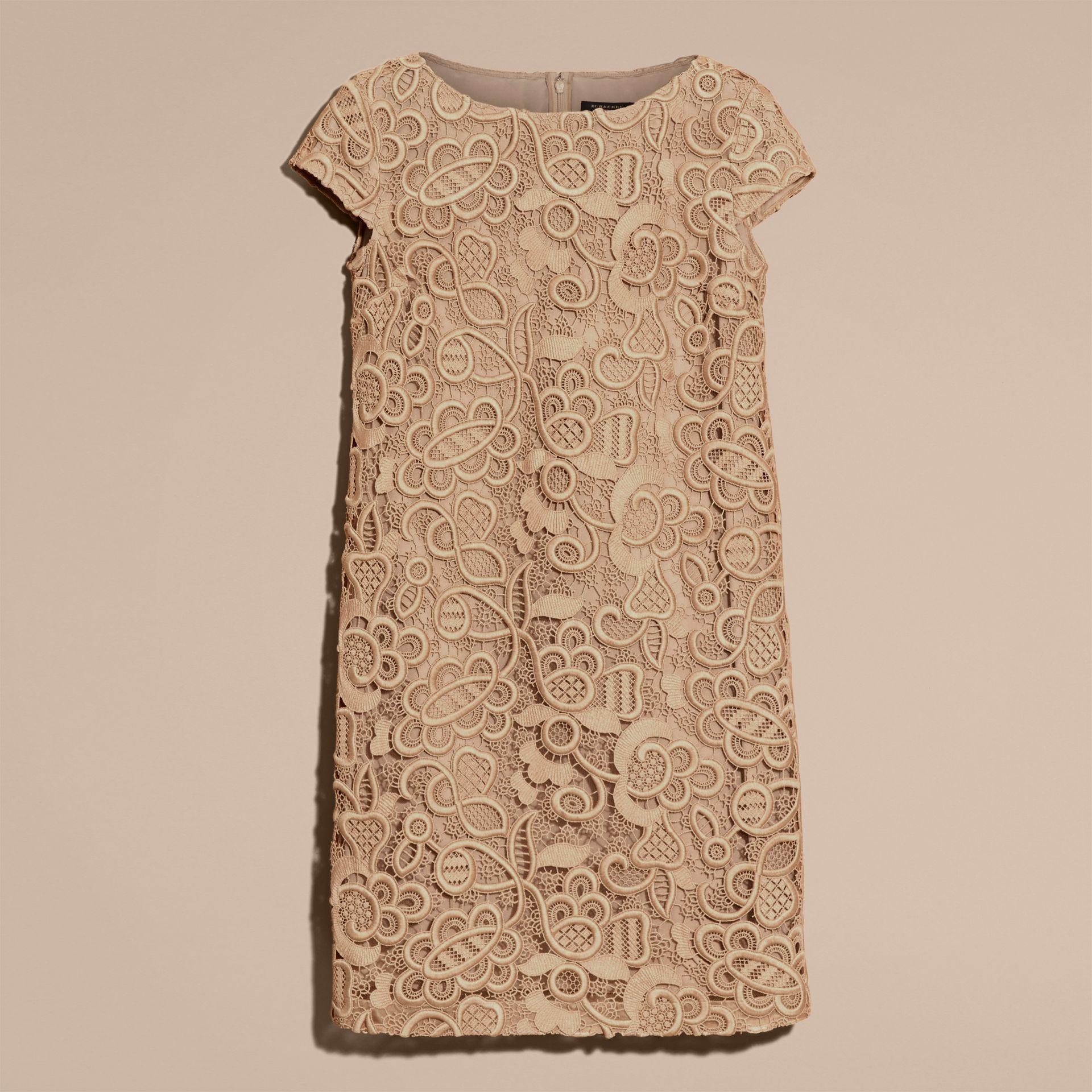 Nude Online Exclusive Swiss Lace Shift Dress - gallery image 4