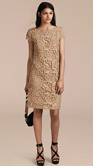 Online Exclusive Swiss Lace Shift Dress