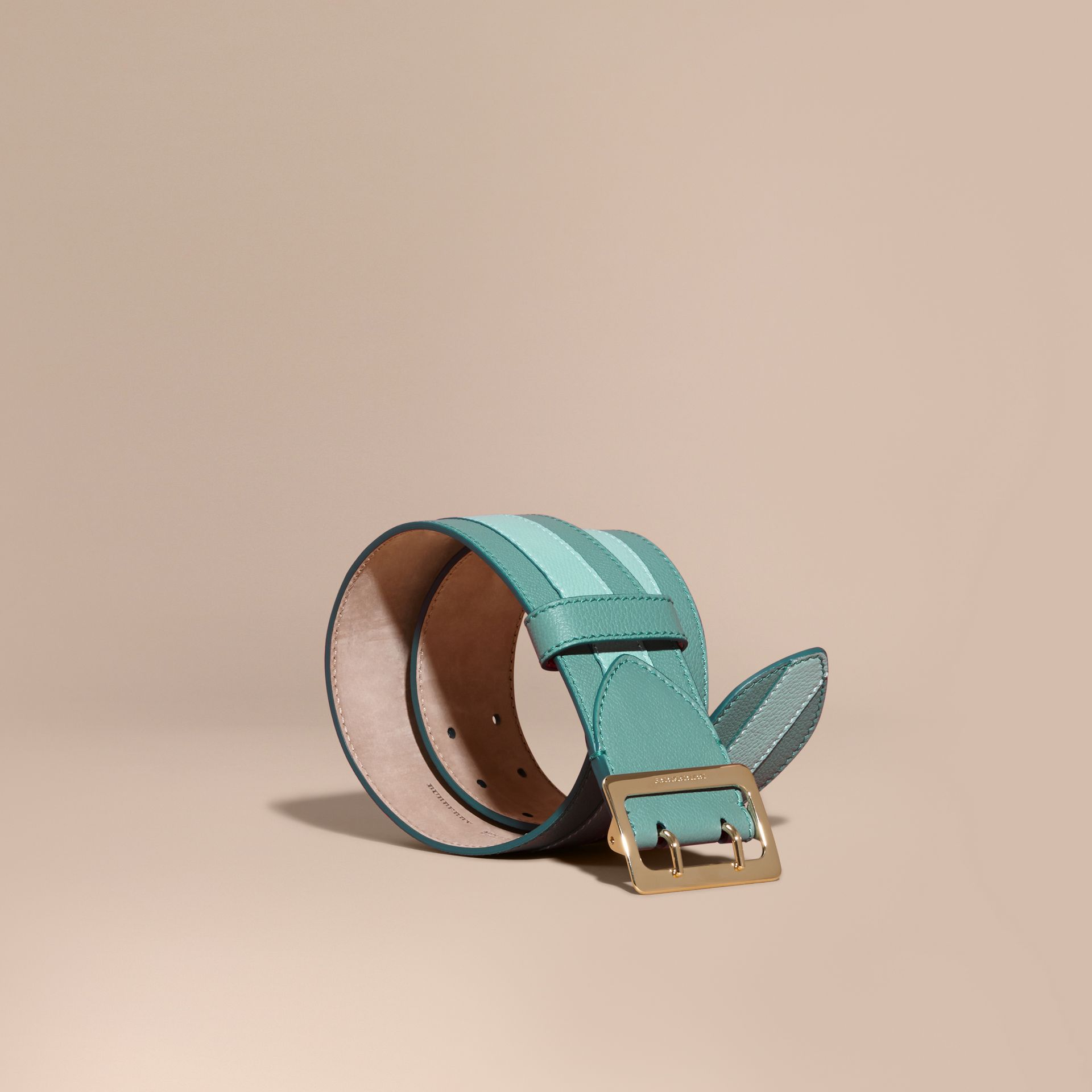 Celadon blue Appliquéd Textured Suede and Leather Belt Celadon Blue - gallery image 1