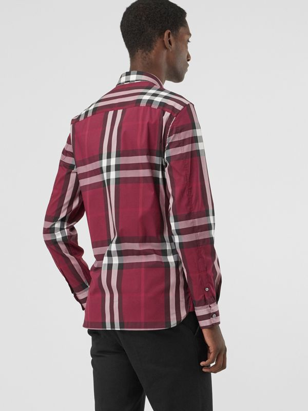Check Stretch Cotton Shirt in Plum - Men | Burberry United Kingdom - cell image 2