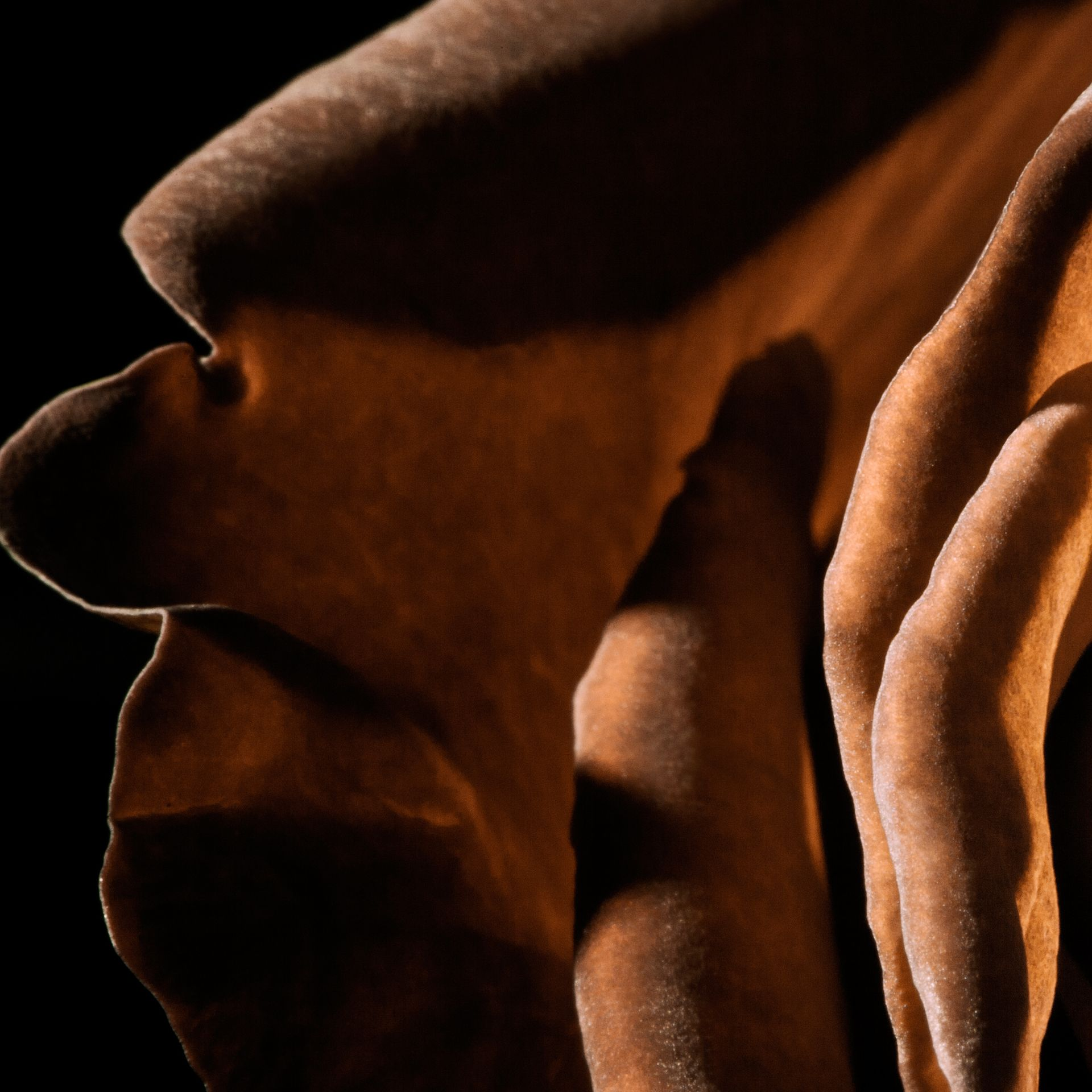 My Burberry Black Body Cream 190ml - Women   Burberry United Kingdom - gallery image 4