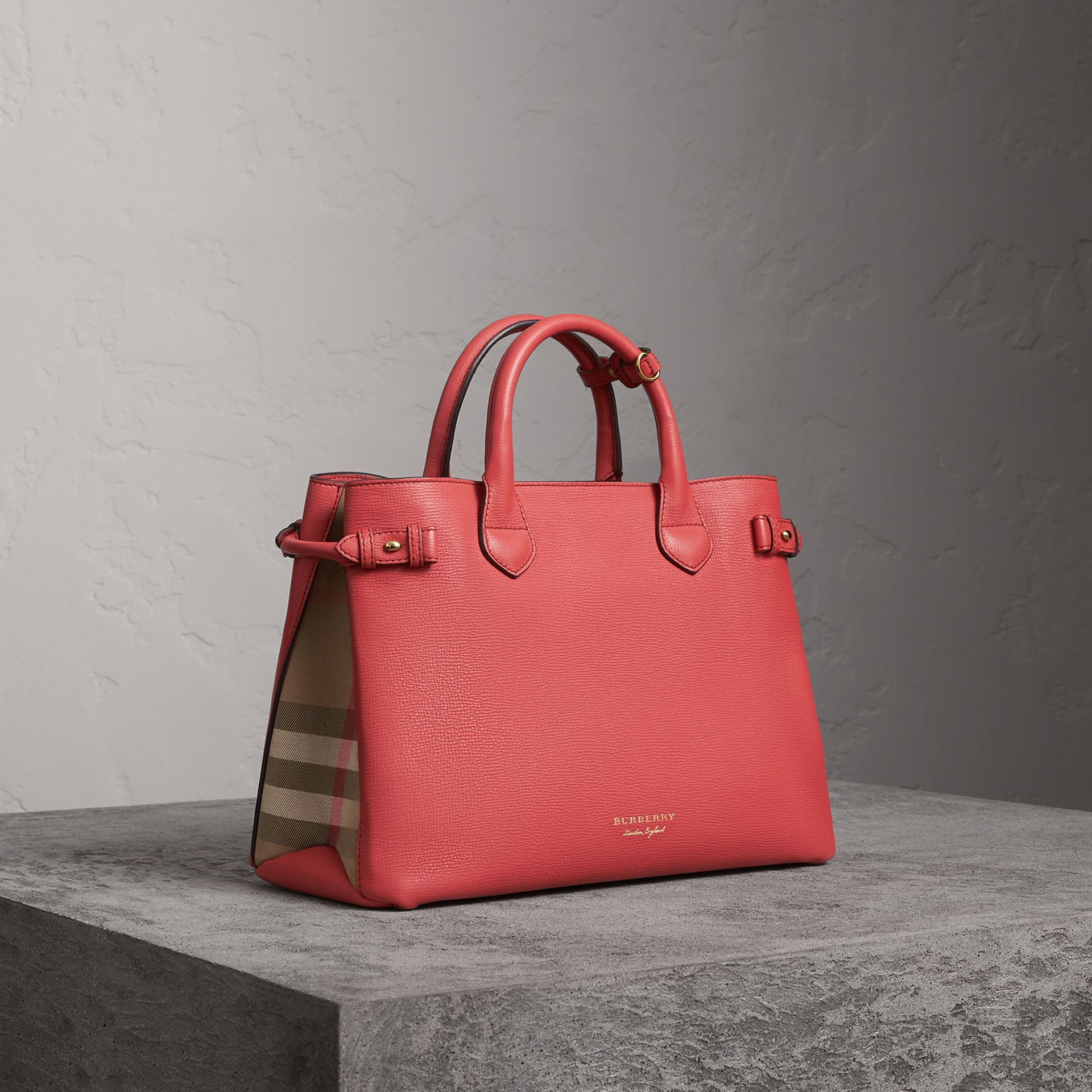 The Medium Banner in Leather and House Check in Cinnamon Red - Women | Burberry - gallery image 0