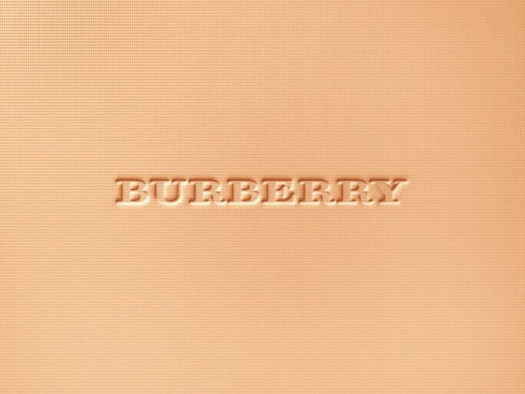 Light honey 10 Burberry Cashmere Compact – Light Honey No.10 - cell image 1