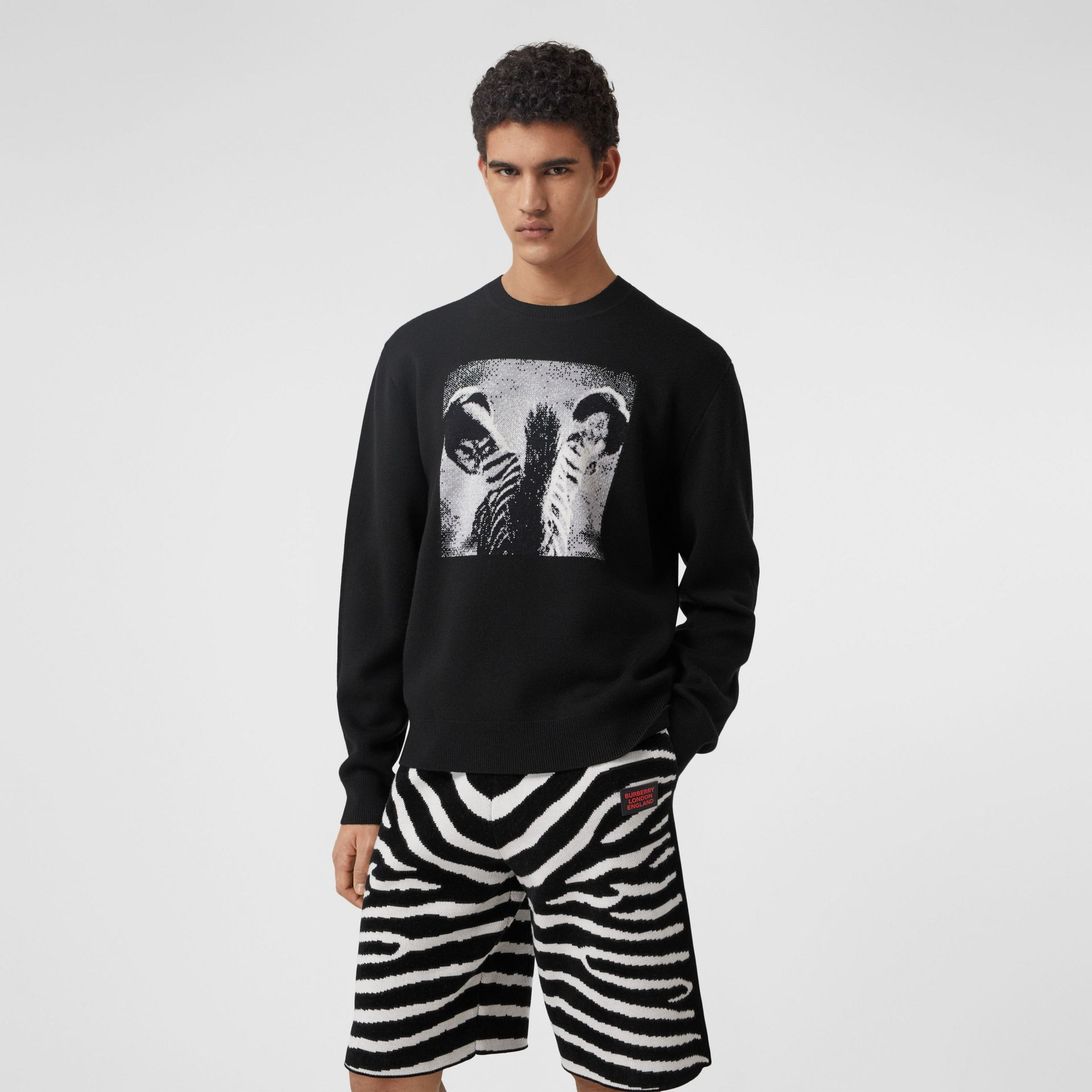 Zebra Wool Jacquard Sweater in Black | Burberry - gallery image 0