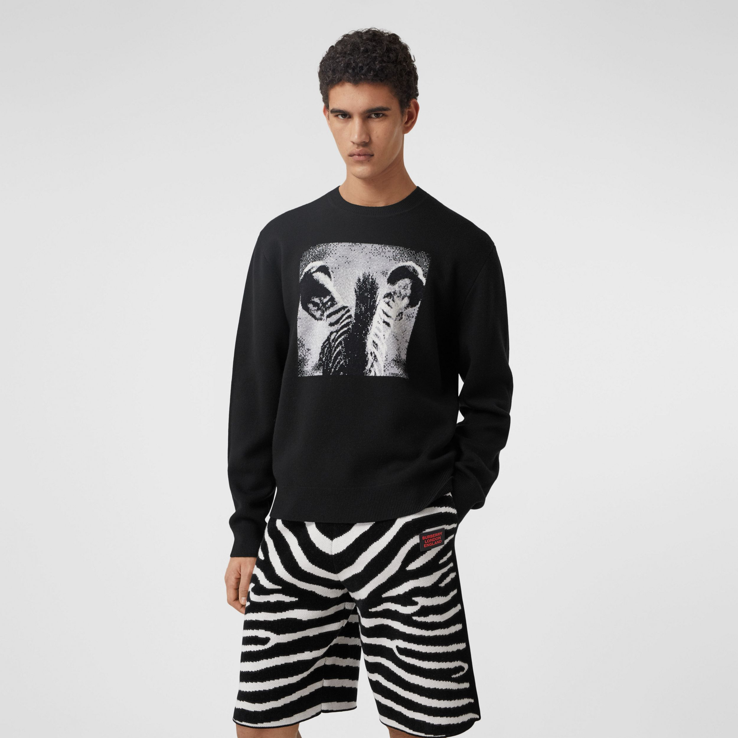 Zebra Wool Jacquard Sweater in Black - Men | Burberry - 1