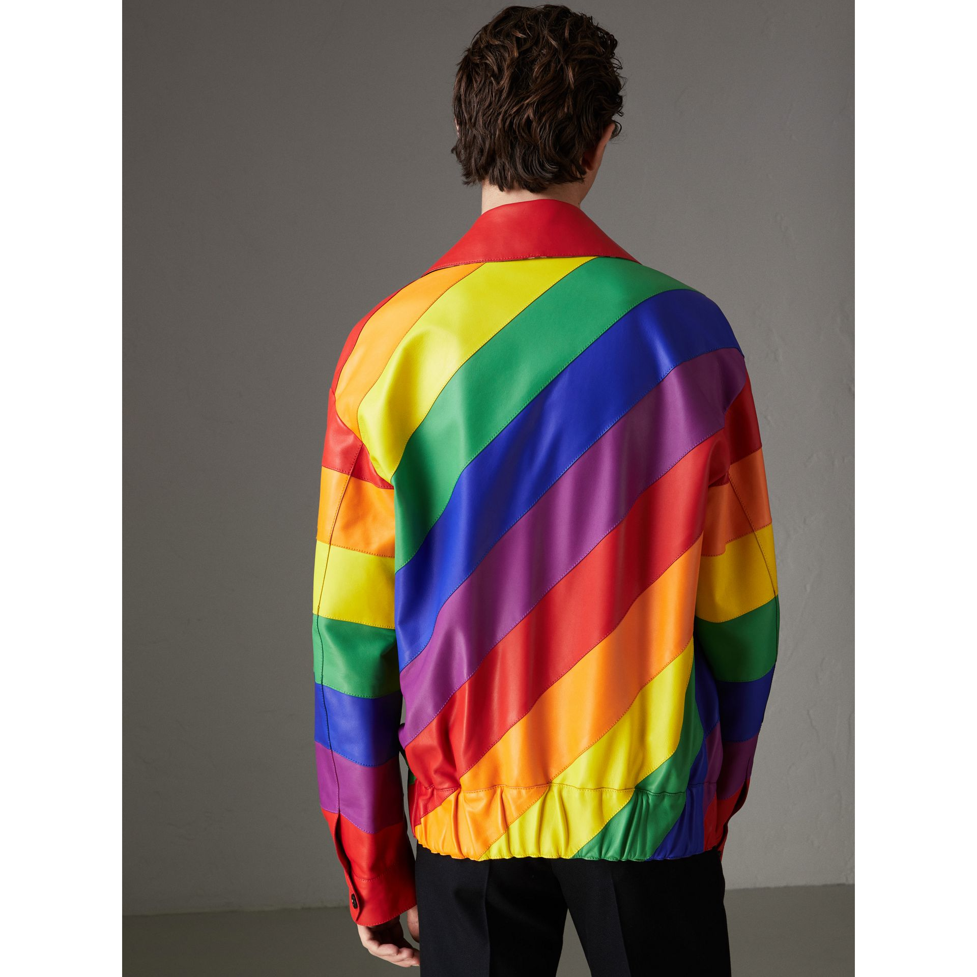 Rainbow Nappa Leather Harrington Jacket | Burberry - gallery image 2
