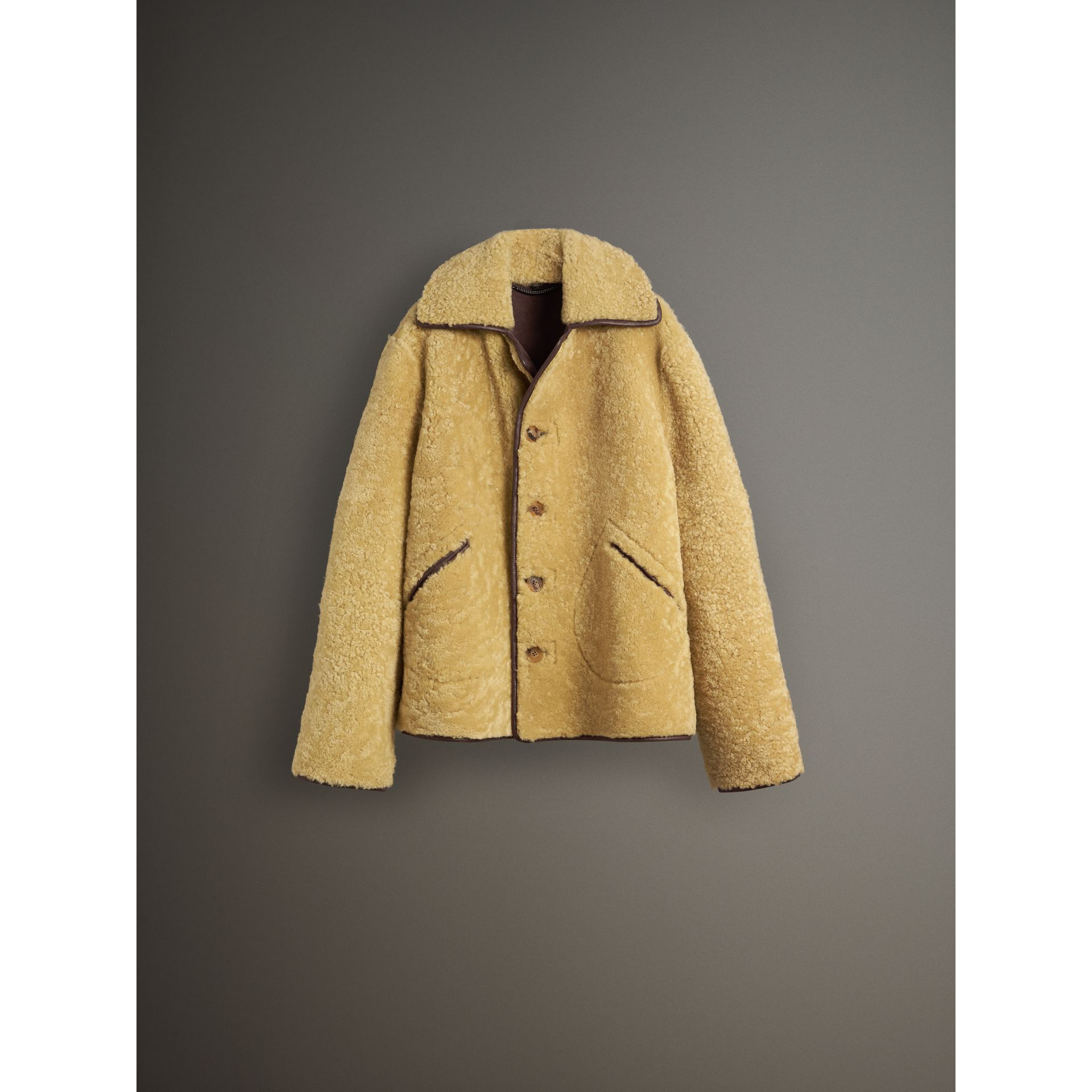 Relaxed Fit Shearling and Lambskin Jacket in Chocolate/light Citrus - Men | Burberry Australia - gallery image 4