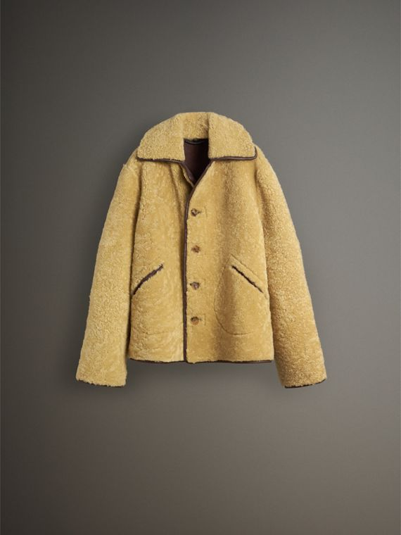 Relaxed Fit Shearling and Lambskin Jacket in Chocolate/light Citrus - Men | Burberry - cell image 3
