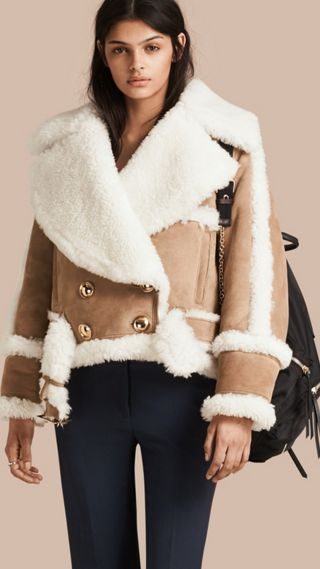 Cropped Suede and Shearling Aviator Jacket