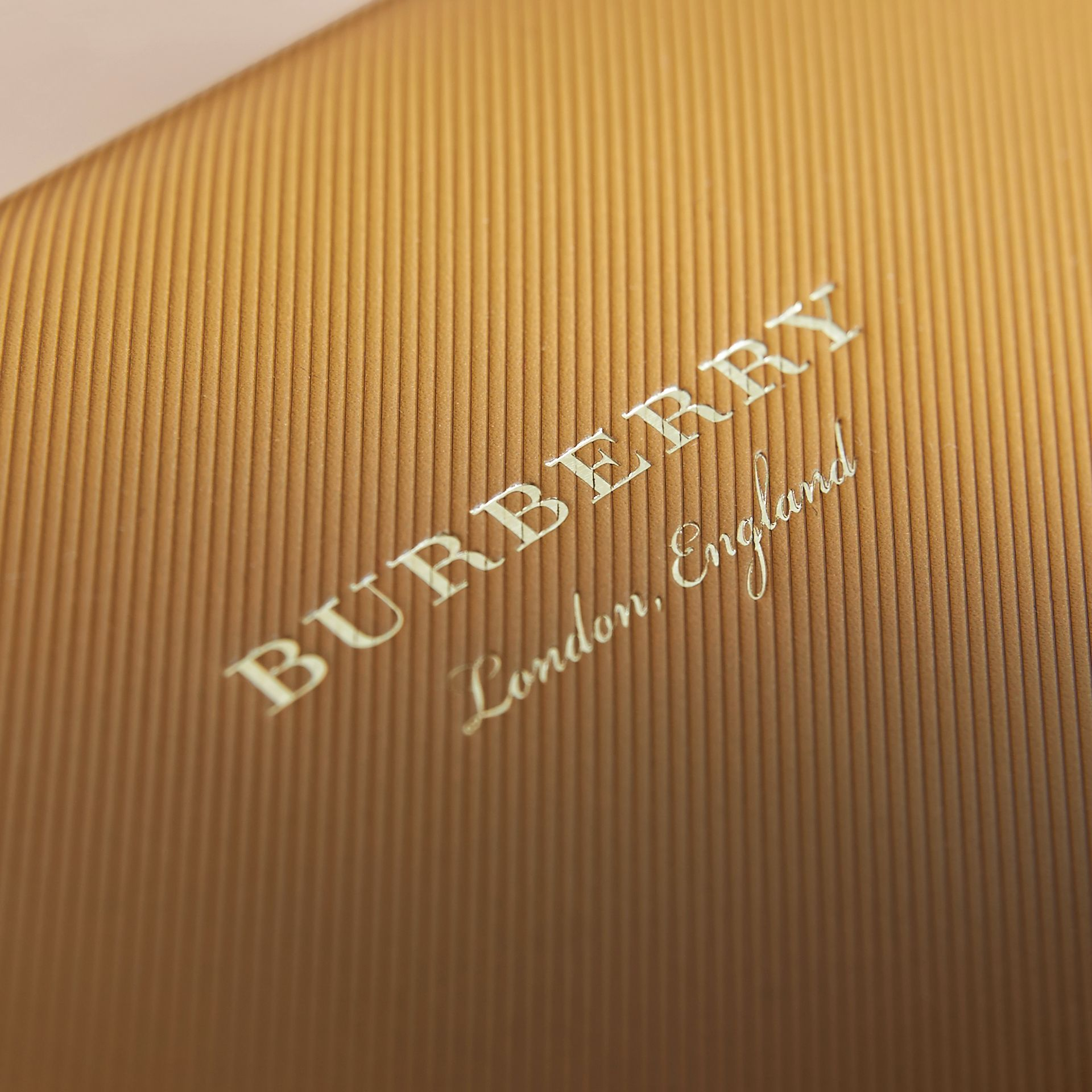 The DK88 Document Case in Ochre Yellow - Men | Burberry Canada - gallery image 5
