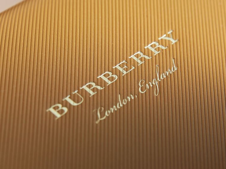 The DK88 Document Case in Ochre Yellow - Men | Burberry Australia - cell image 4