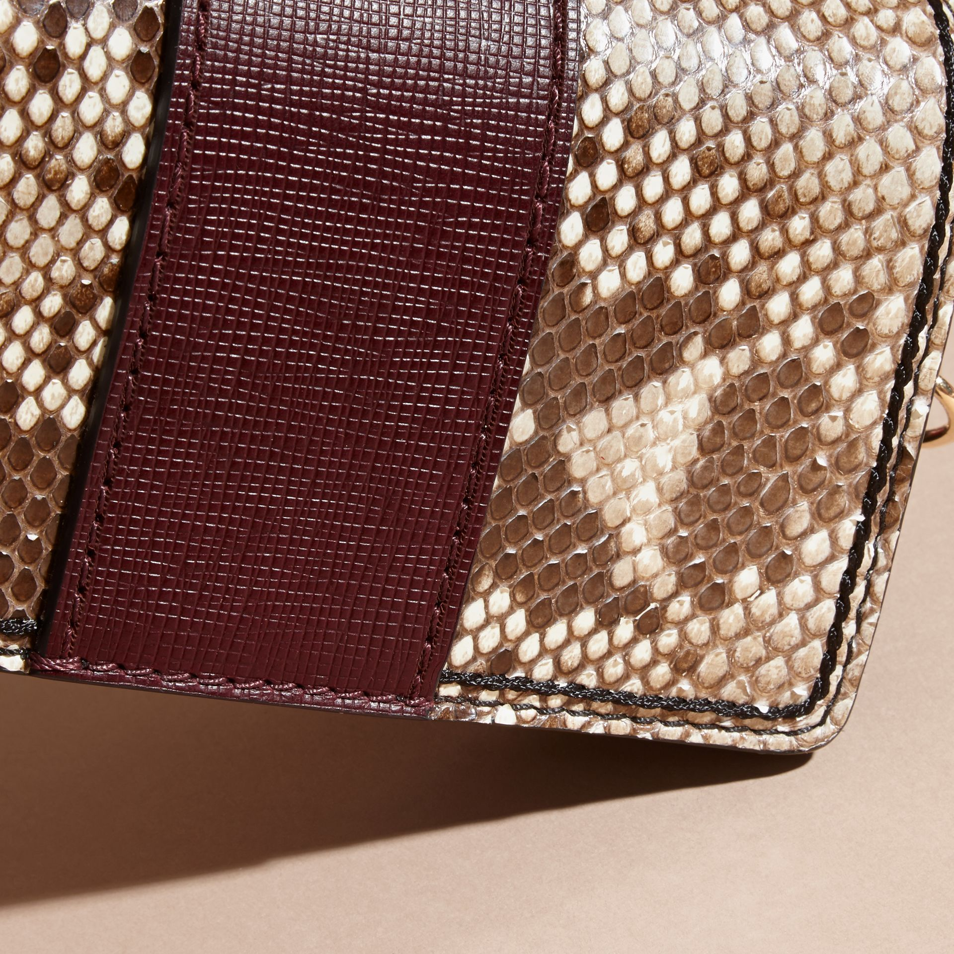 Natural / burgundy The Small Buckle Bag in Python and Leather - gallery image 7