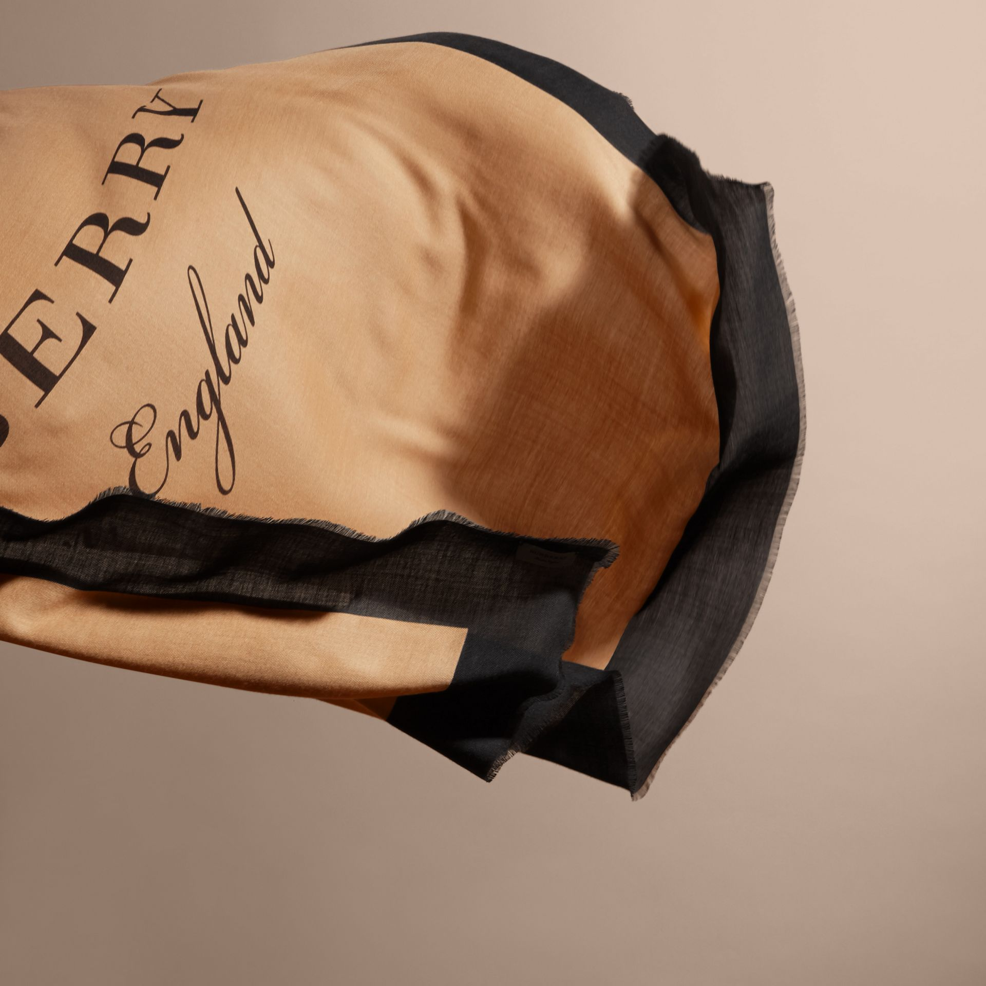 Burberry Print Cashmere Blend Scarf Camel/black - gallery image 5