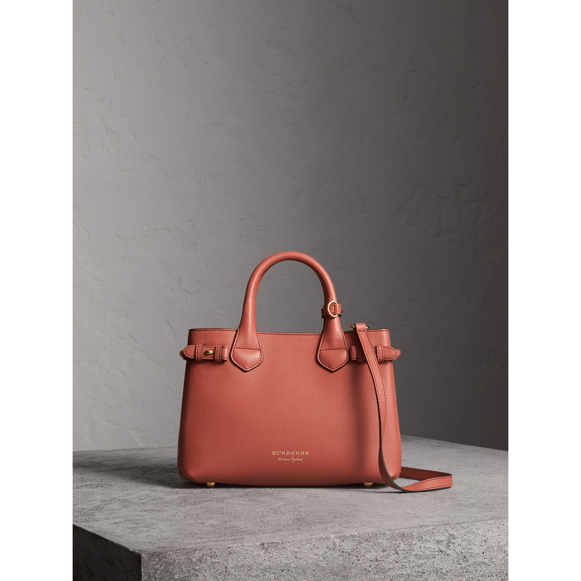 The Small Banner in Leather and House Check in Cinnamon Red - Women | Burberry - gallery image 8