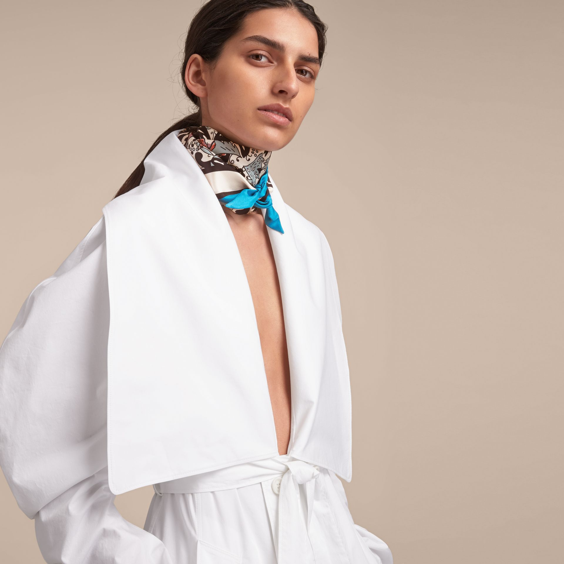 Beasts Print Silk Slim Scarf in Pale Blue Carbon - Women | Burberry - gallery image 3
