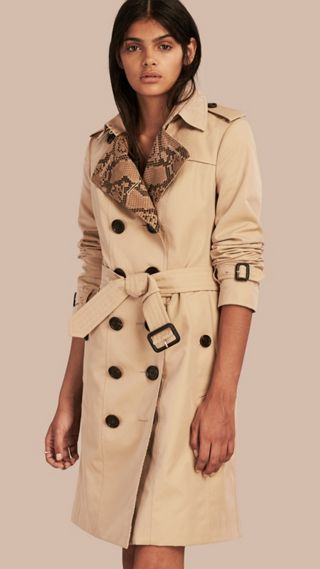 Python Print Detail Cotton Gabardine Trench Coat