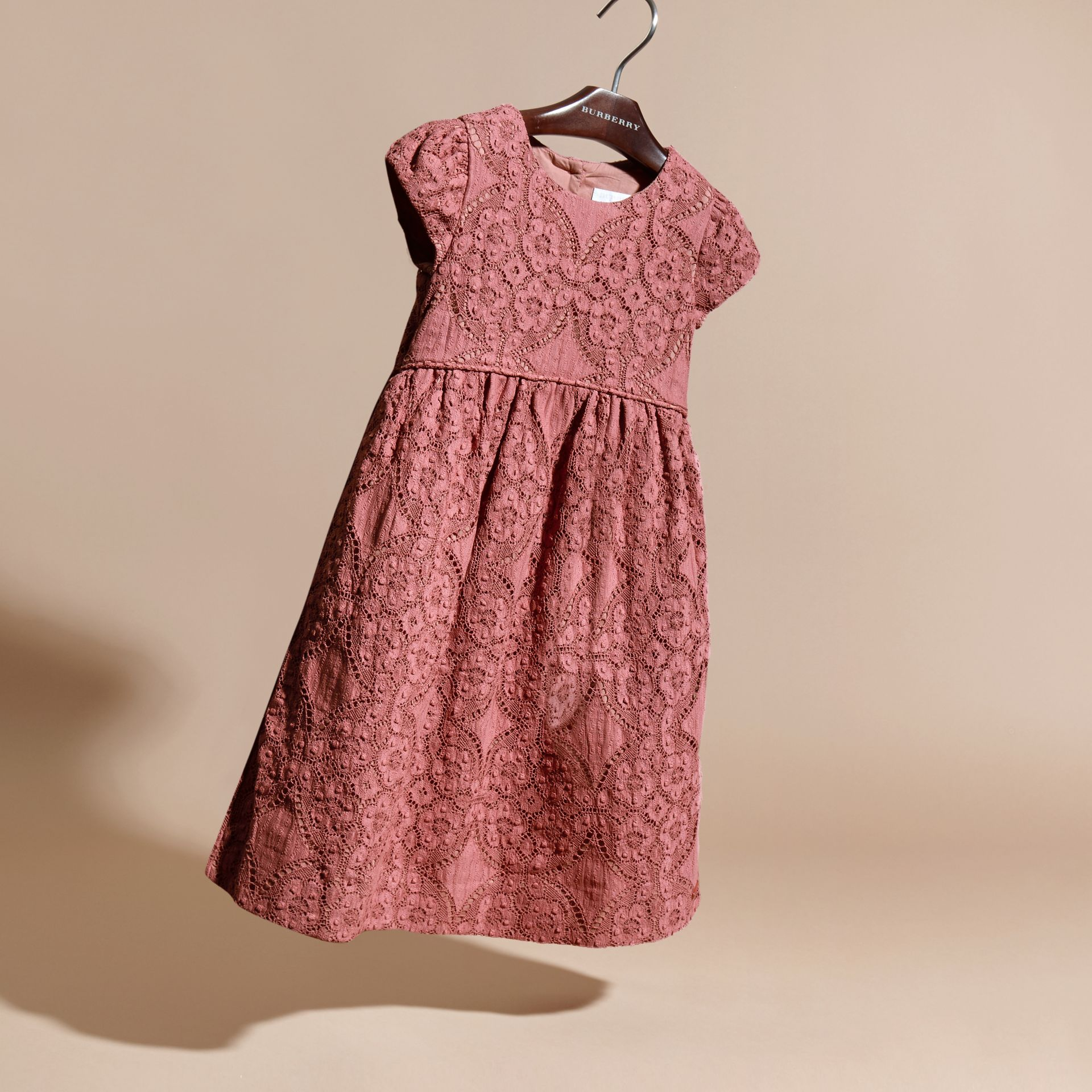 Antique rose English Floral Lace Dress - gallery image 3