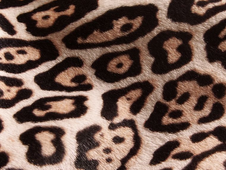 Camel Leopard Print Shearling Coat - cell image 1