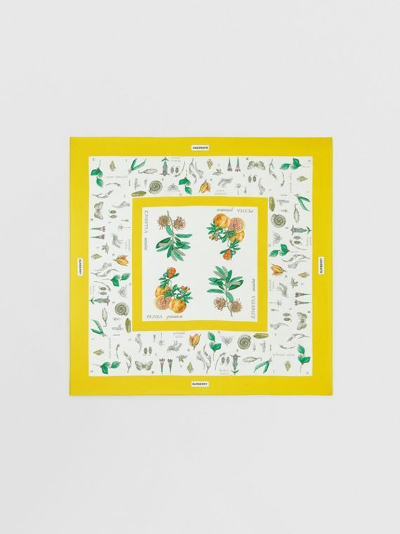Botanical Print Silk Square Scarf in Yellow