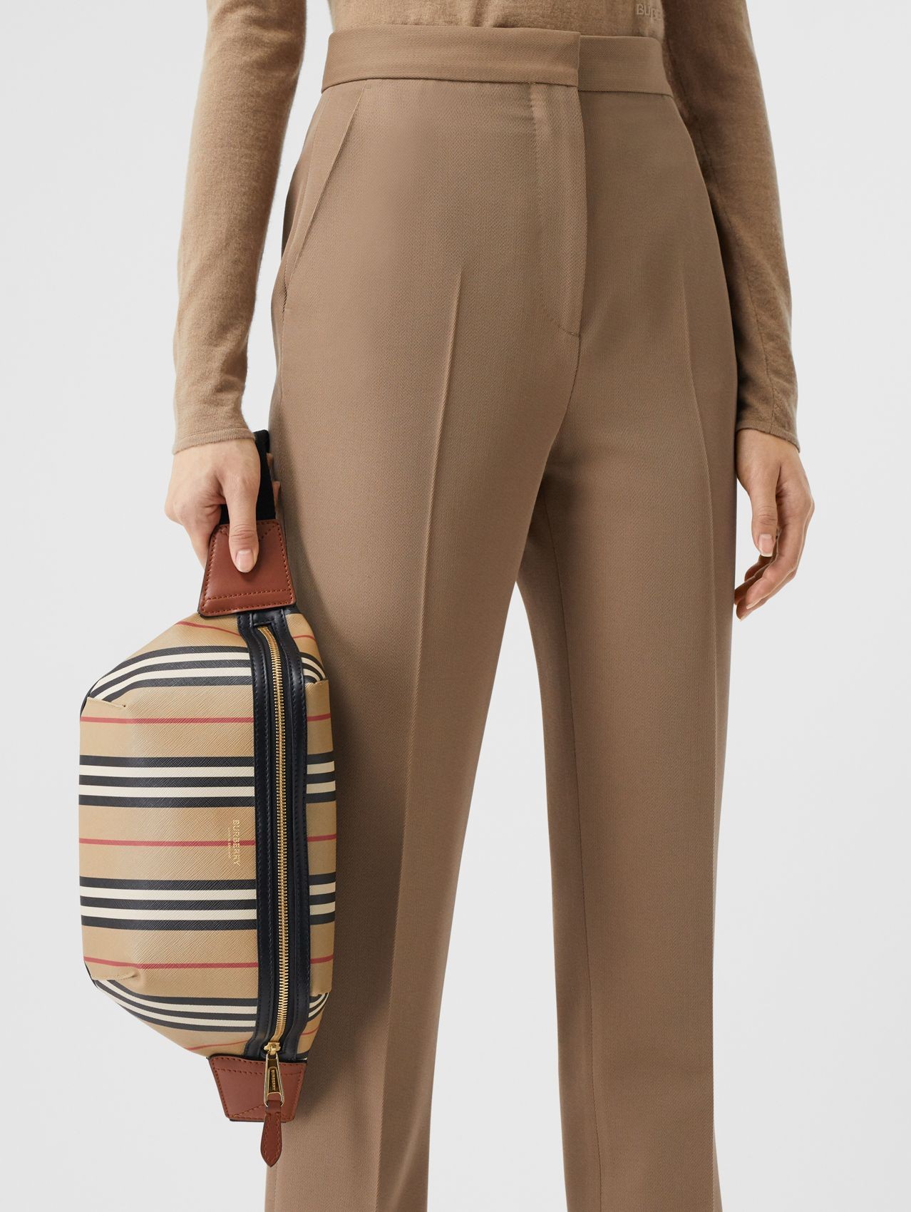 Icon Stripe E-canvas Sonny Bum Bag in Archive Beige