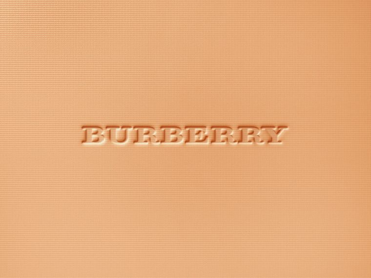 Burberry Cashmere Compact – Ochre Nude No.12 - Women | Burberry United Kingdom - cell image 1